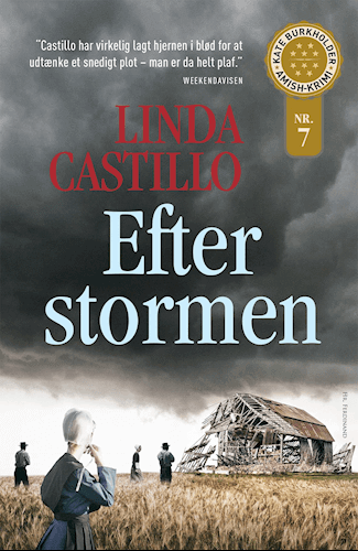 Efter stormen (2015)