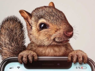 egern weekendanbefaling